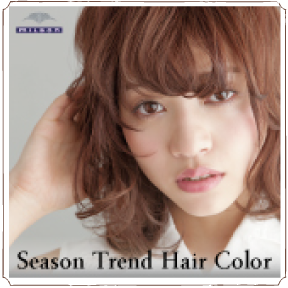 Season Trend Hair Color
